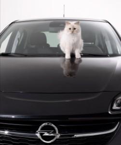 Choupette Lagerfeld Opel Corsa