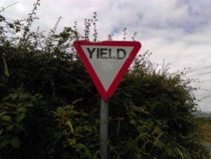 Rural road driving tips